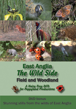 East Anglia - The Wild Side: Field and Woodland (DVD)